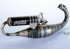 Polini Big Evolution Limited Piaggio Zip Sp 94 cc